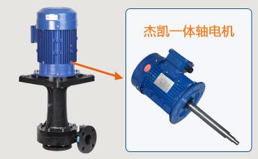 耐酸碱立式泵